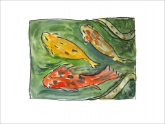 Koi Fish in Mexico-Giclee print